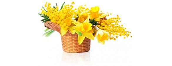 С Праздником Весны и тепла!